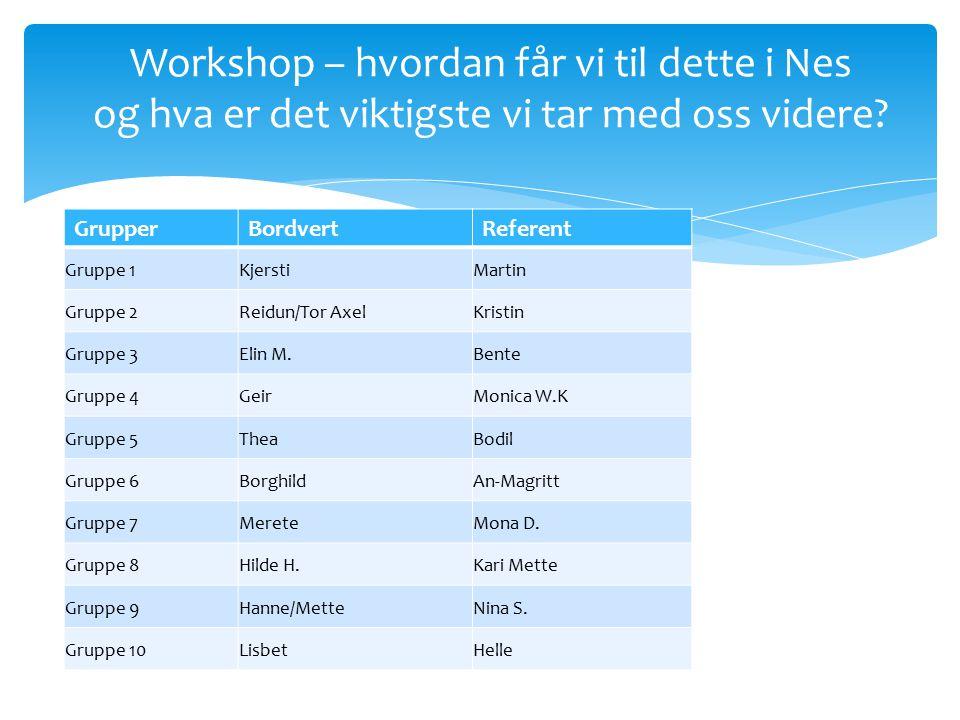 Workshop – hvordan får vi til dette i Nes og hva er det viktigste vi tar med oss videre