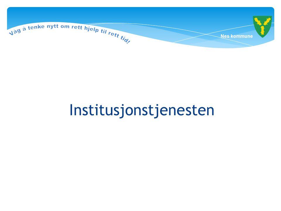 Institusjonstjenesten