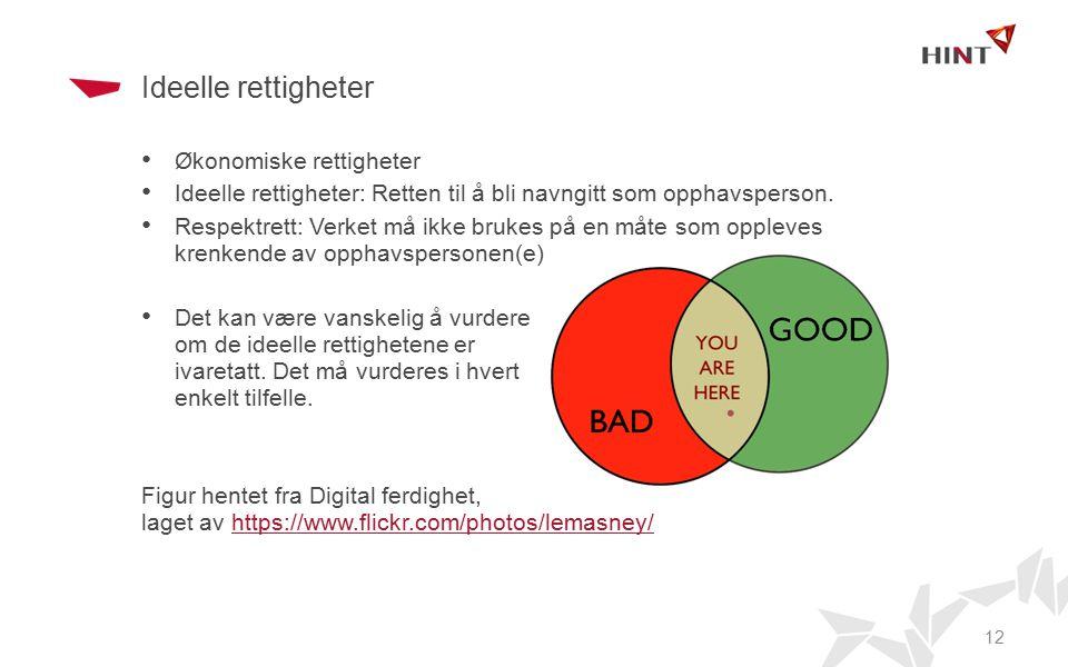 Ideelle rettigheter Økonomiske rettigheter