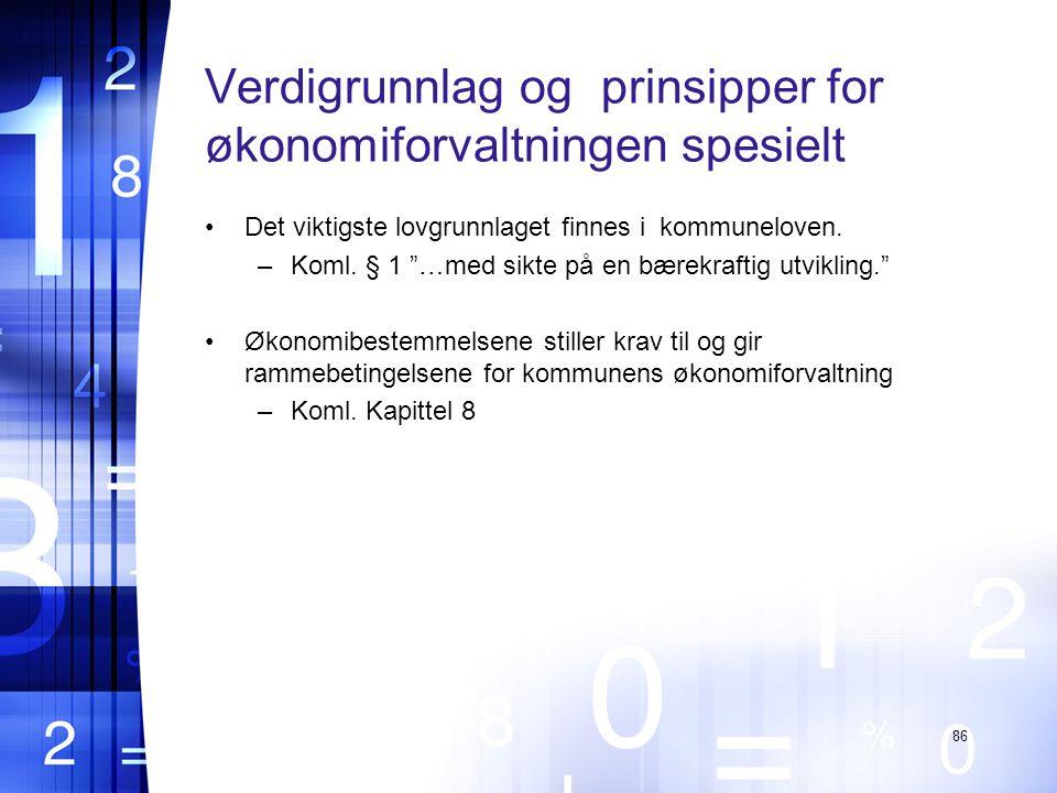 Verdigrunnlag og prinsipper for økonomiforvaltningen spesielt