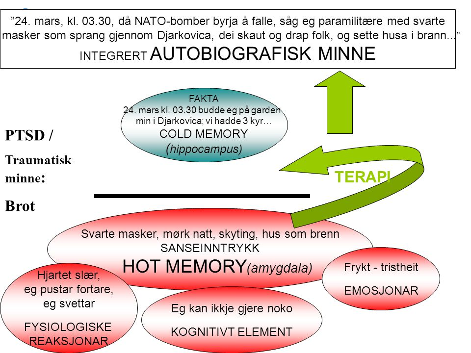 HOT MEMORY(amygdala) PTSD / Brot TERAPI (hippocampus)