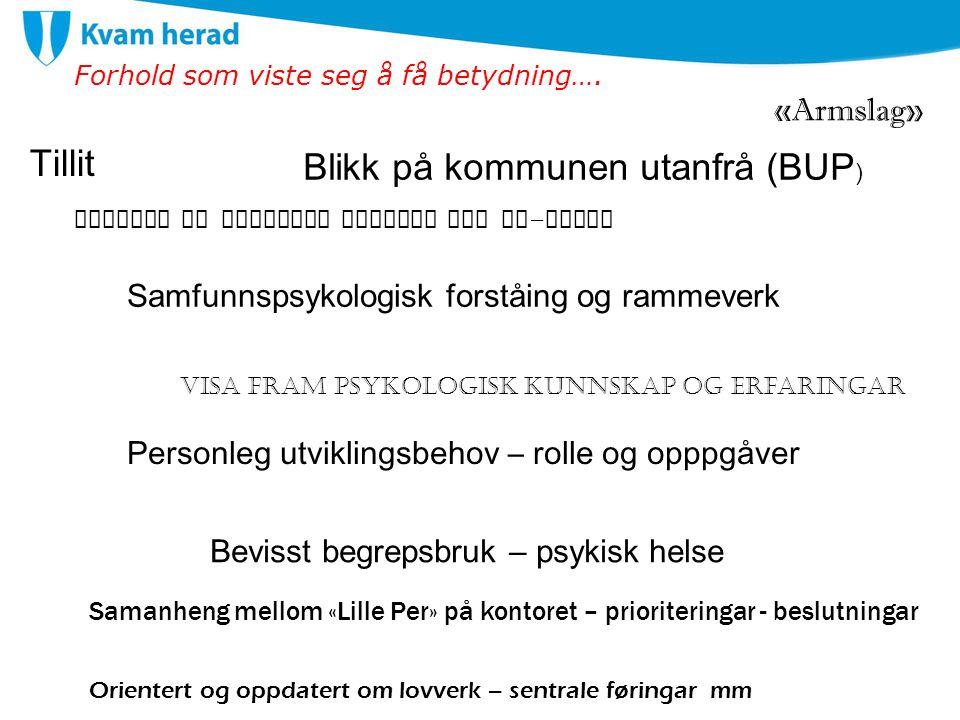 Blikk på kommunen utanfrå (BUP)