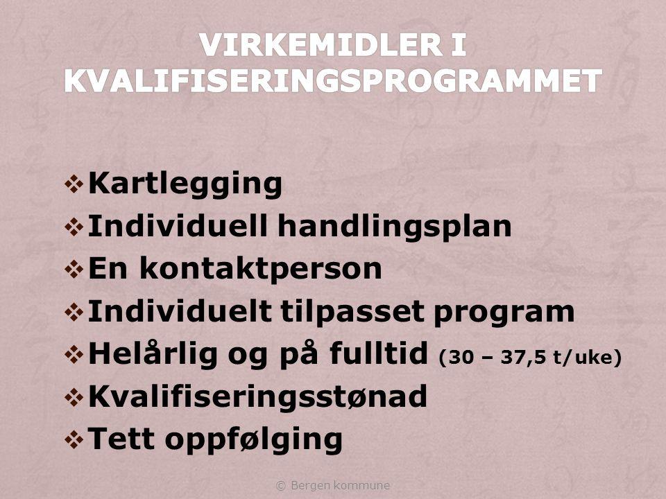 Virkemidler i kvalifiseringsprogrammet