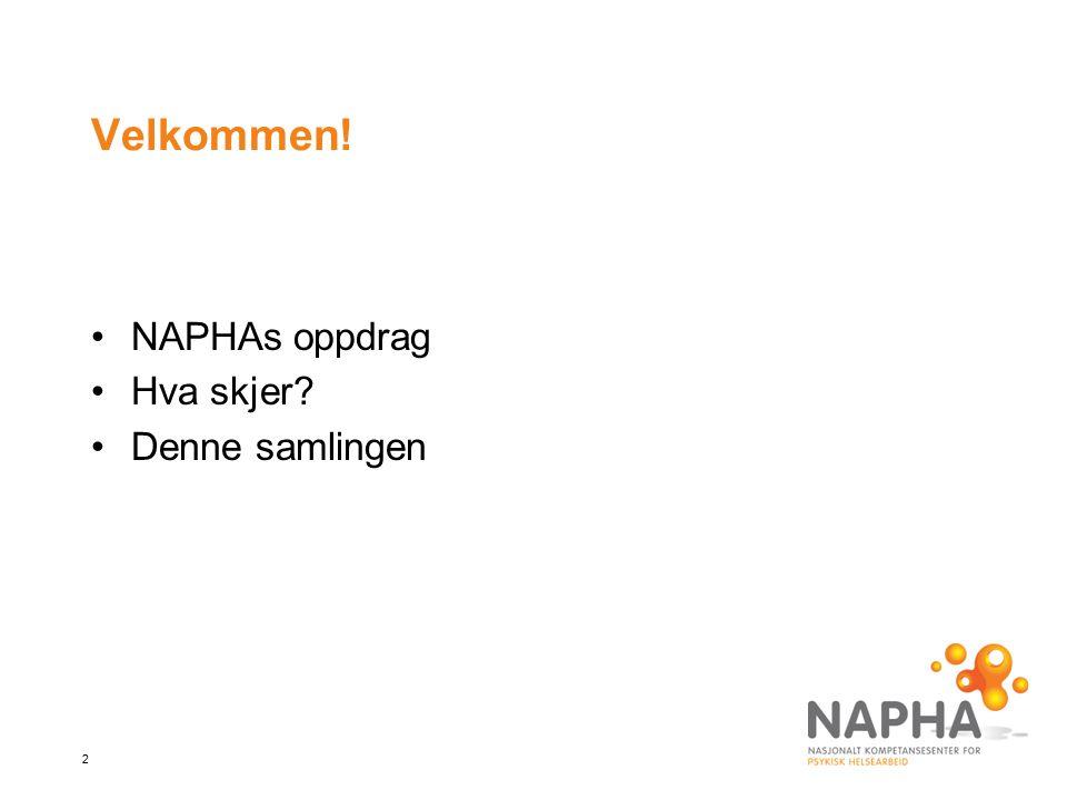 Velkommen! NAPHAs oppdrag Hva skjer Denne samlingen