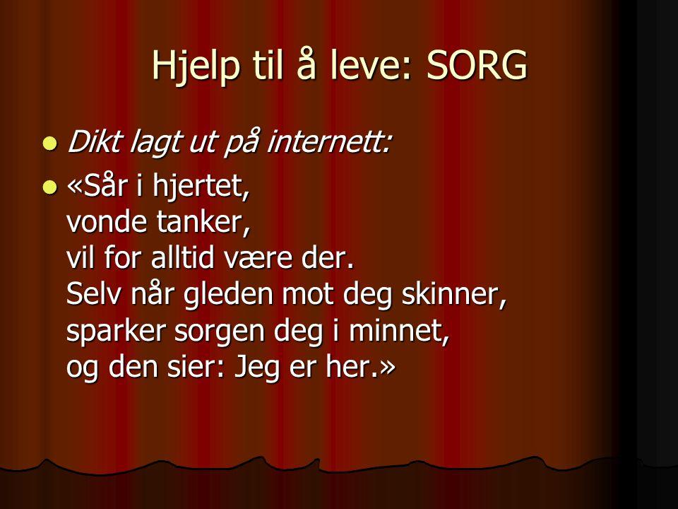 Hjelp til å leve: SORG Dikt lagt ut på internett: