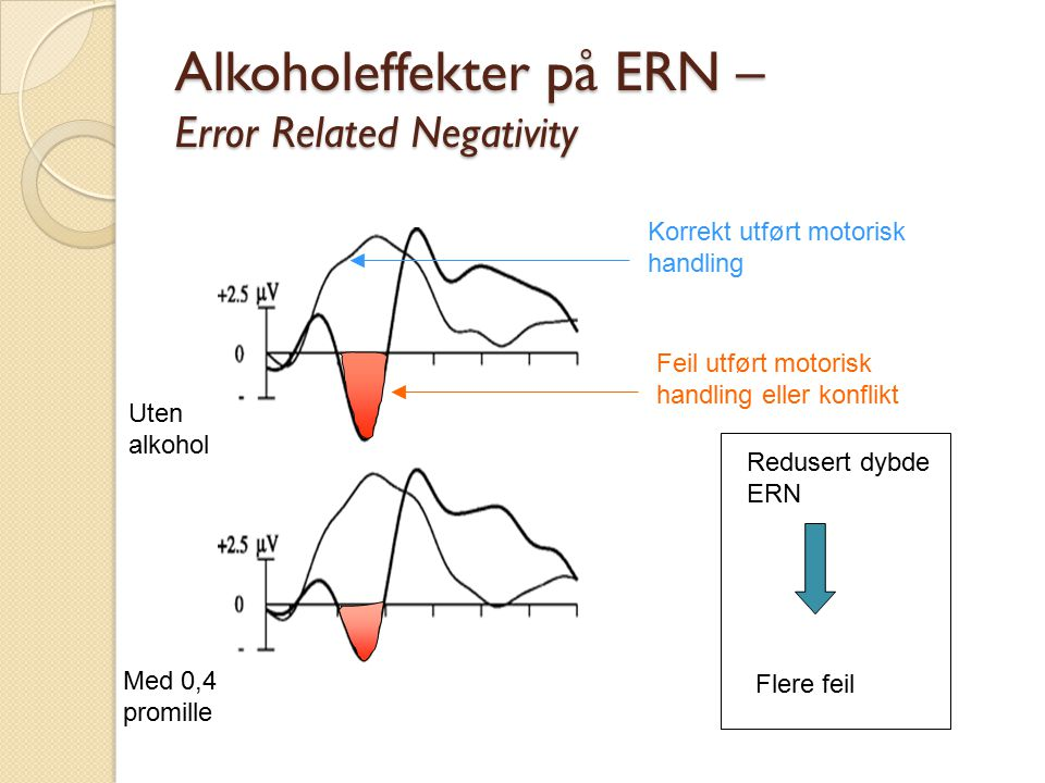 Alkoholeffekter på ERN – Error Related Negativity