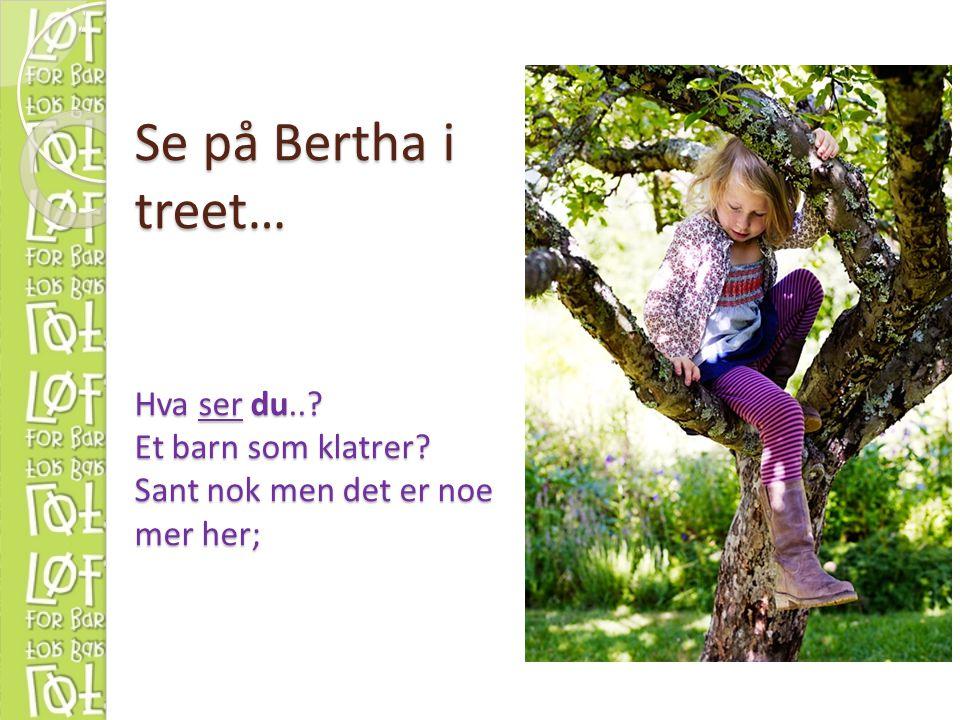 Se på Bertha i treet… Hva ser du. Et barn som klatrer