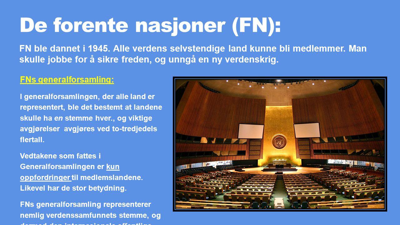 De forente nasjoner (FN):