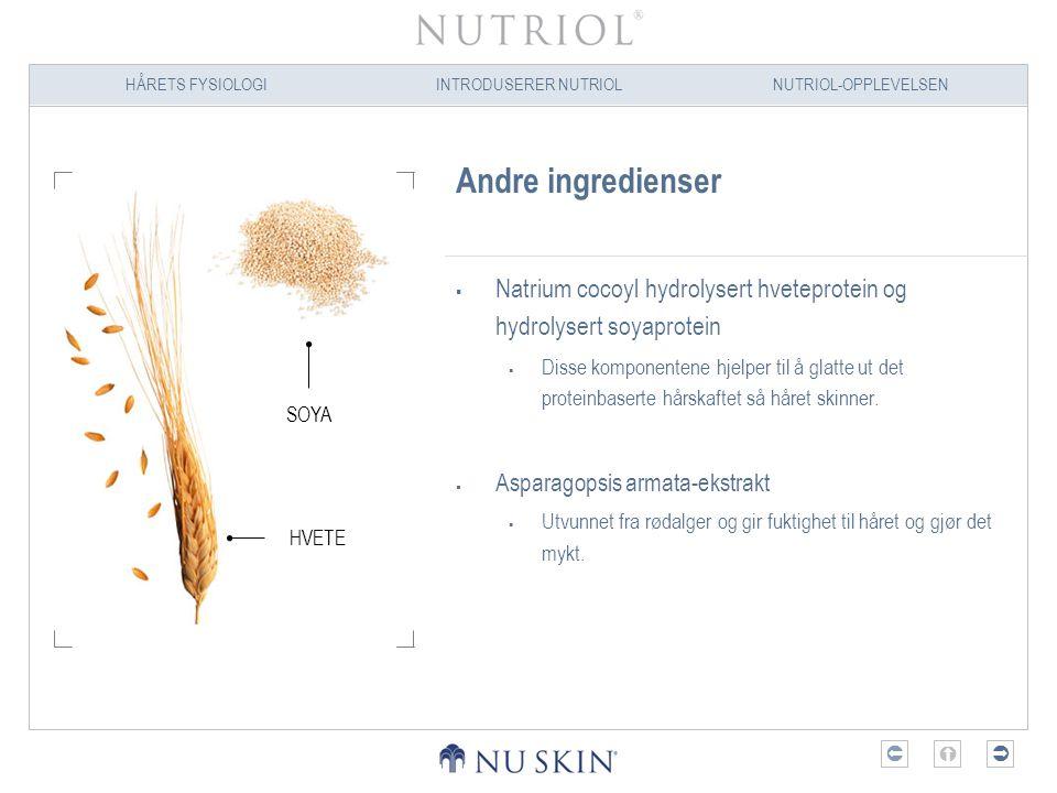 Andre ingredienser Natrium cocoyl hydrolysert hveteprotein og hydrolysert soyaprotein.