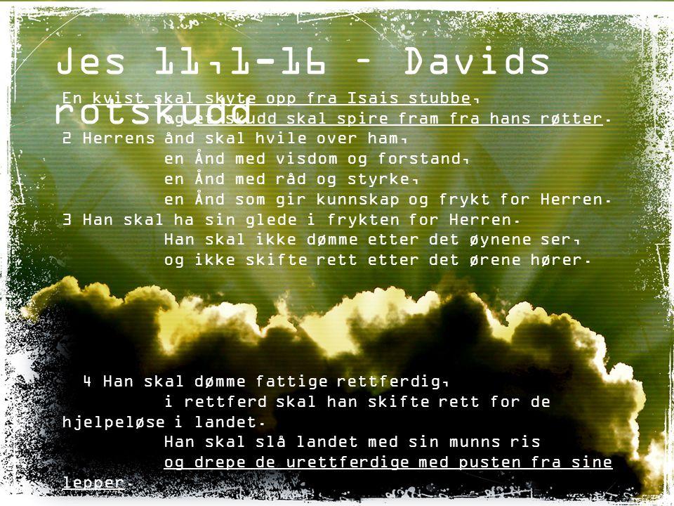 Jes 11,1-16 – Davids rotskudd En kvist skal skyte opp fra Isais stubbe, og et skudd skal spire fram fra hans røtter.