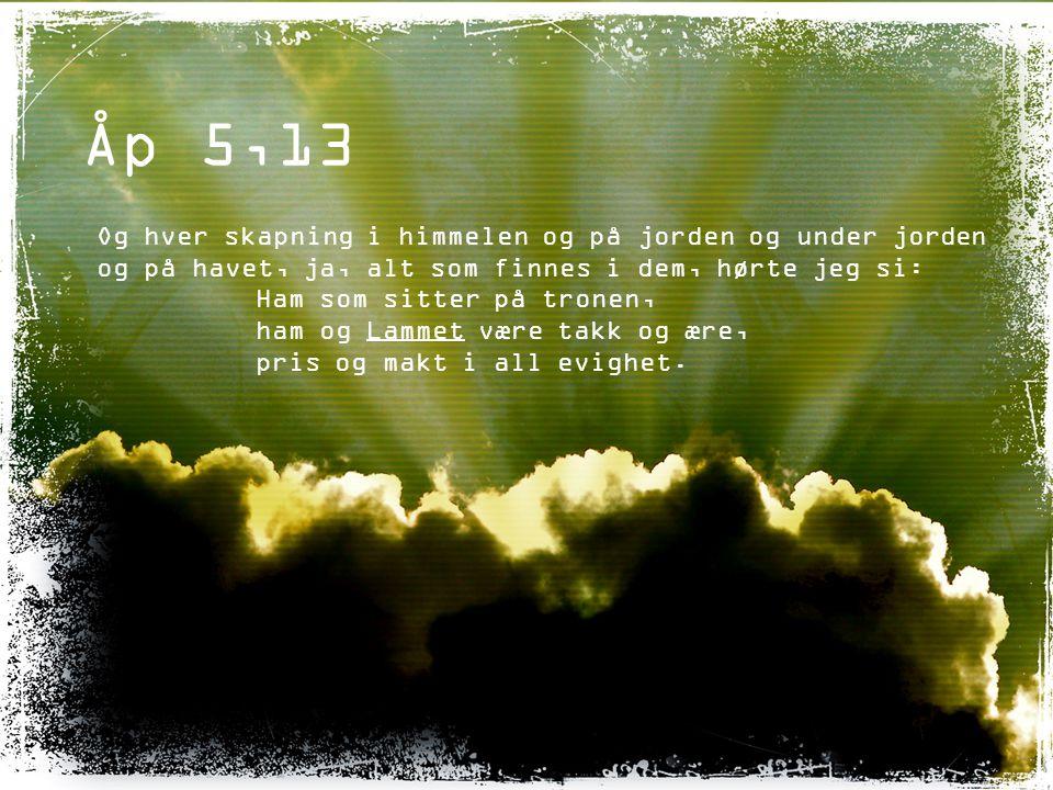 Åp 5,13 Og hver skapning i himmelen og på jorden og under jorden og på havet, ja, alt som finnes i dem, hørte jeg si: