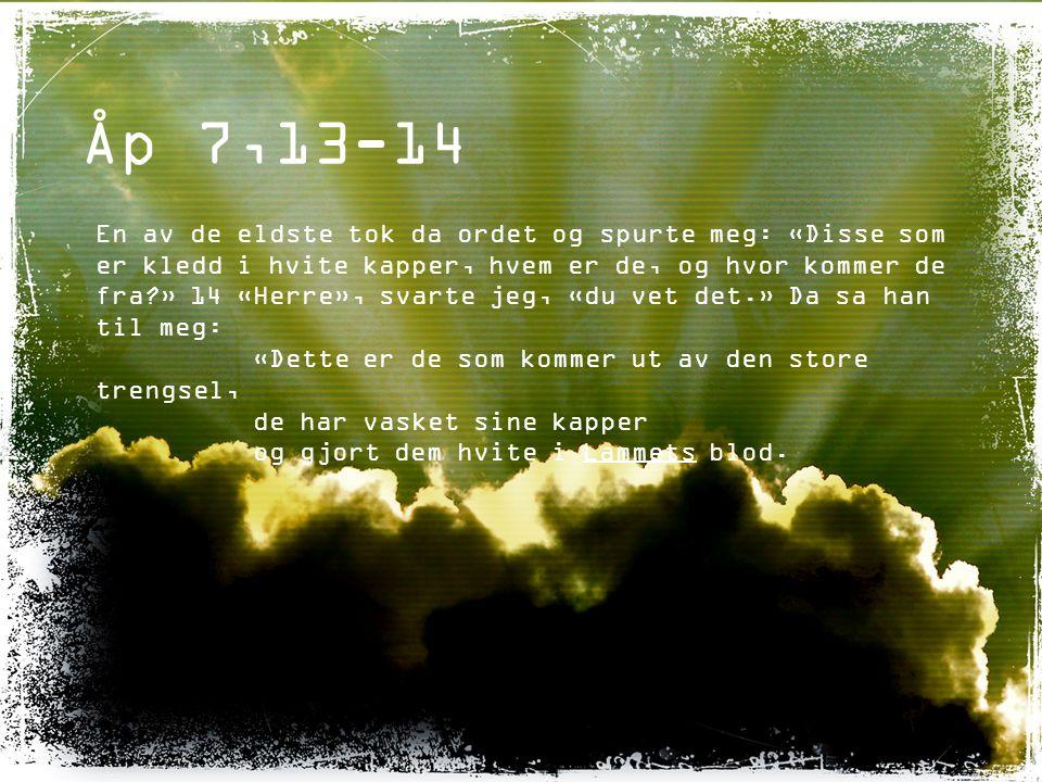 Åp 7,13-14