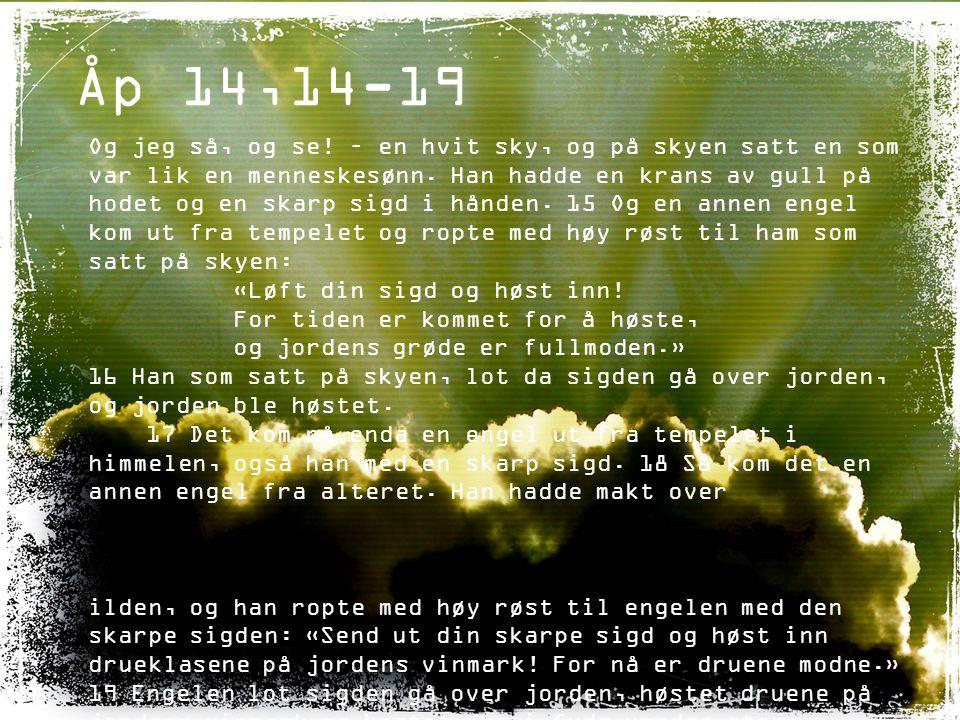 Åp 14,14-19