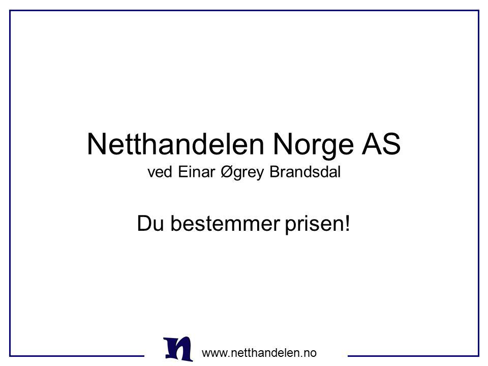Netthandelen Norge AS ved Einar Øgrey Brandsdal