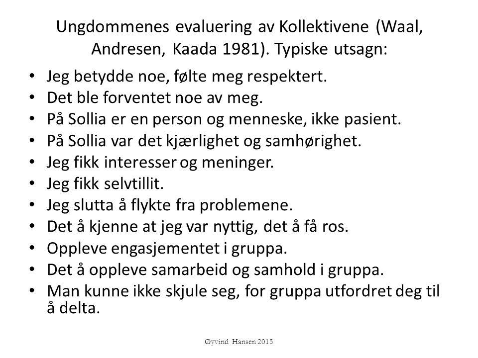 Ungdommenes evaluering av Kollektivene (Waal, Andresen, Kaada 1981)