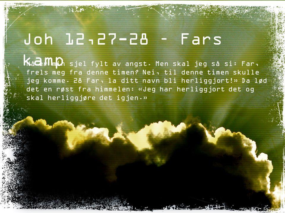 Joh 12,27-28 – Fars kamp
