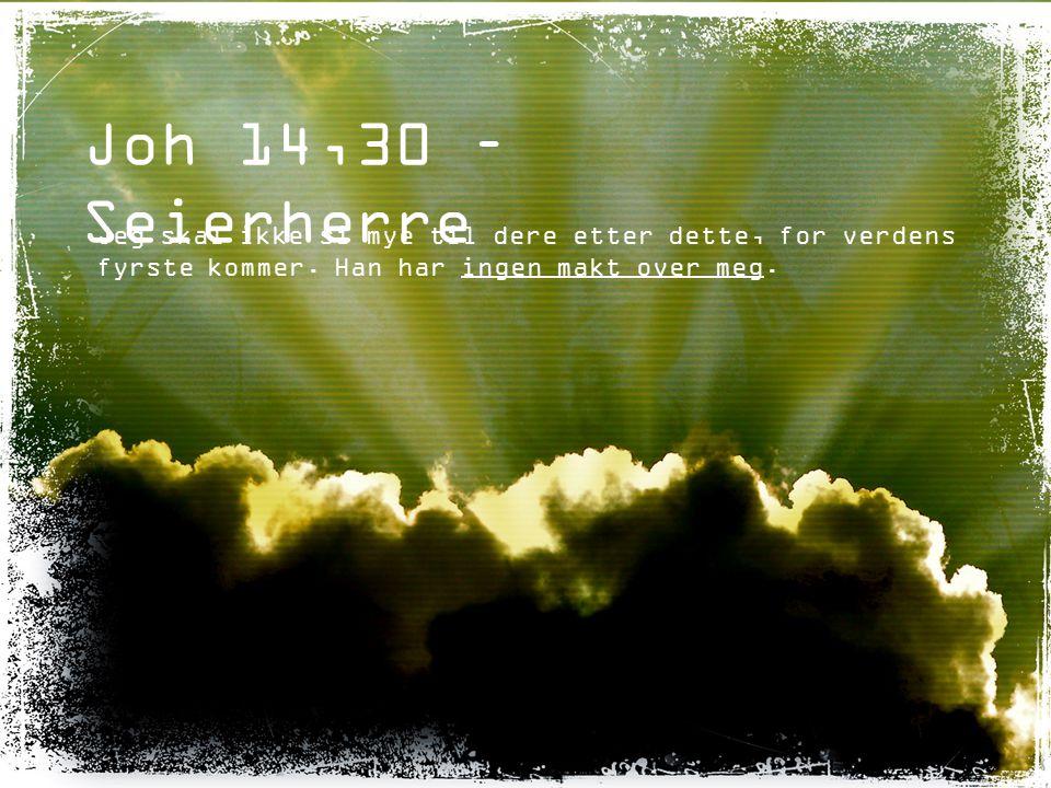 Joh 14,30 – Seierherre Jeg skal ikke si mye til dere etter dette, for verdens fyrste kommer.