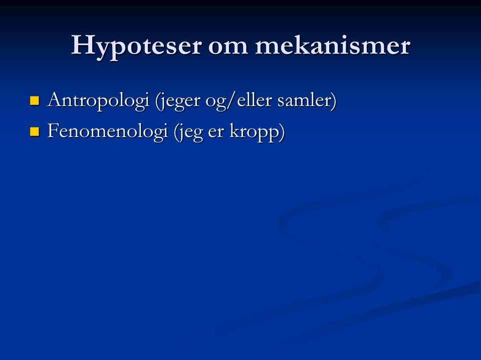 Hypoteser om mekanismer