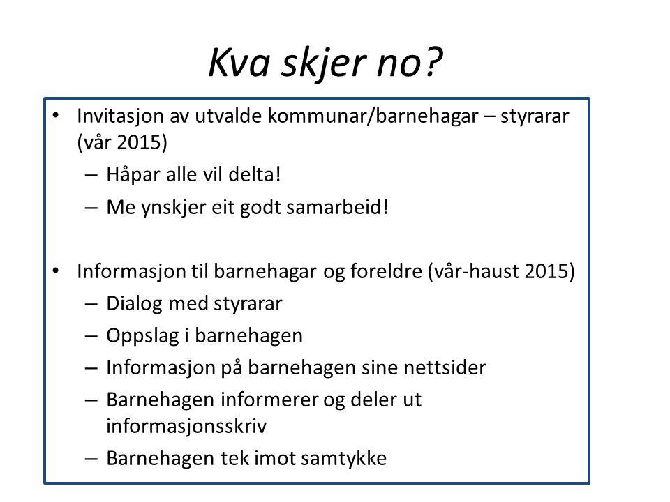 Kva skjer no Invitasjon av utvalde kommunar/barnehagar – styrarar (vår 2015) Håpar alle vil delta!