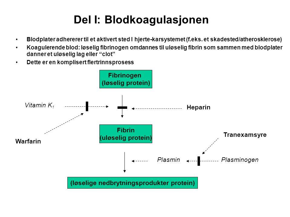 Del I: Blodkoagulasjonen