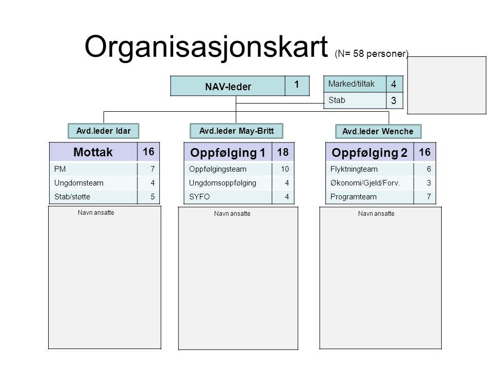 Organisasjonskart (N= 58 personer)