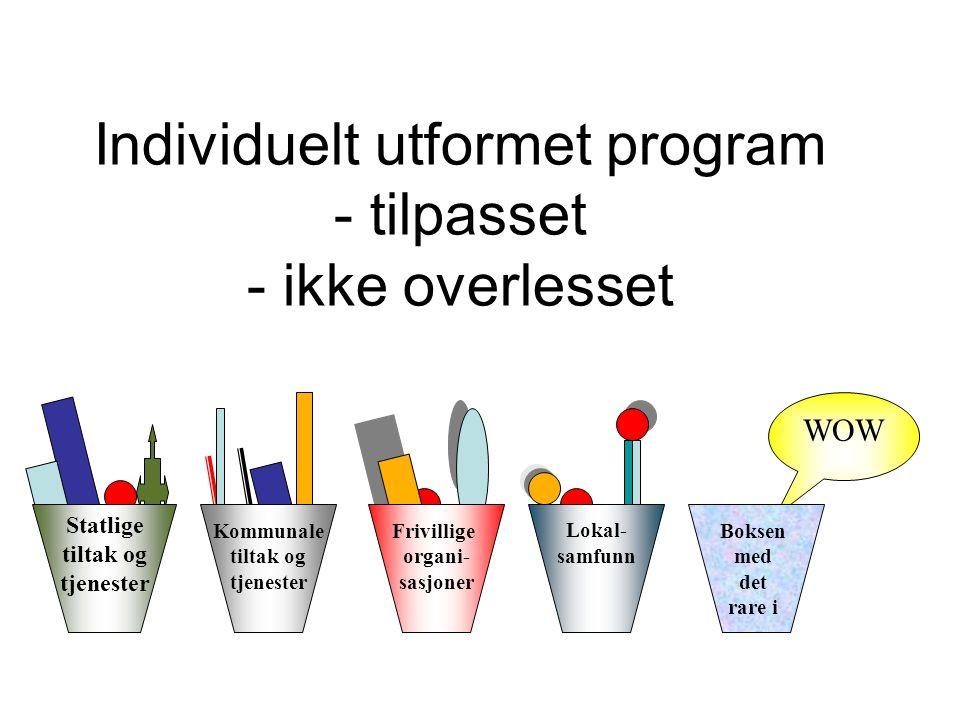 Individuelt utformet program - tilpasset - ikke overlesset
