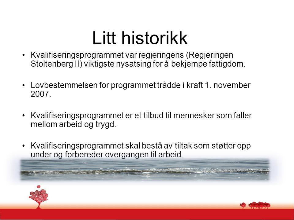 Litt historikk Kvalifiseringsprogrammet var regjeringens (Regjeringen Stoltenberg II) viktigste nysatsing for å bekjempe fattigdom.