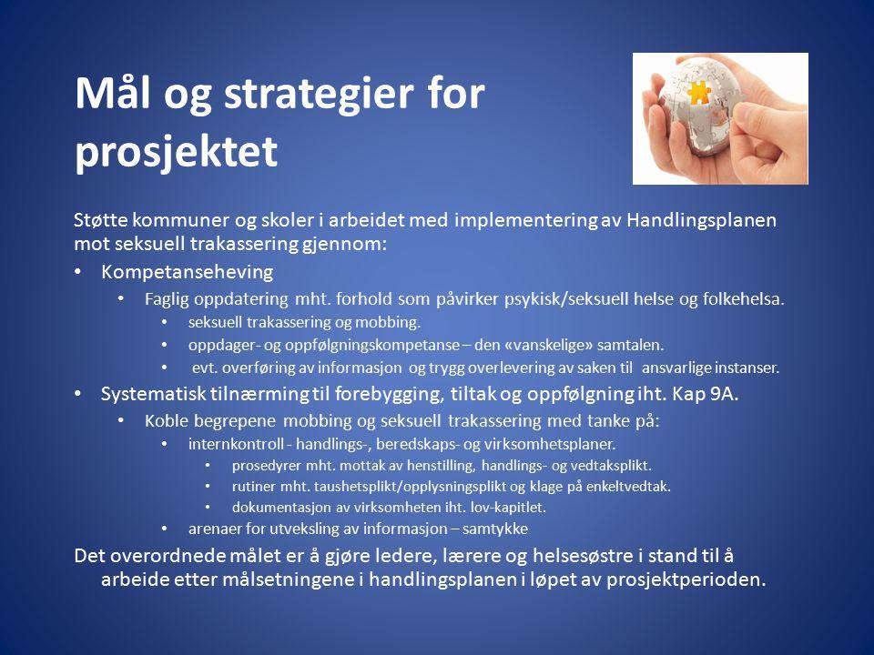 Mål og strategier for prosjektet
