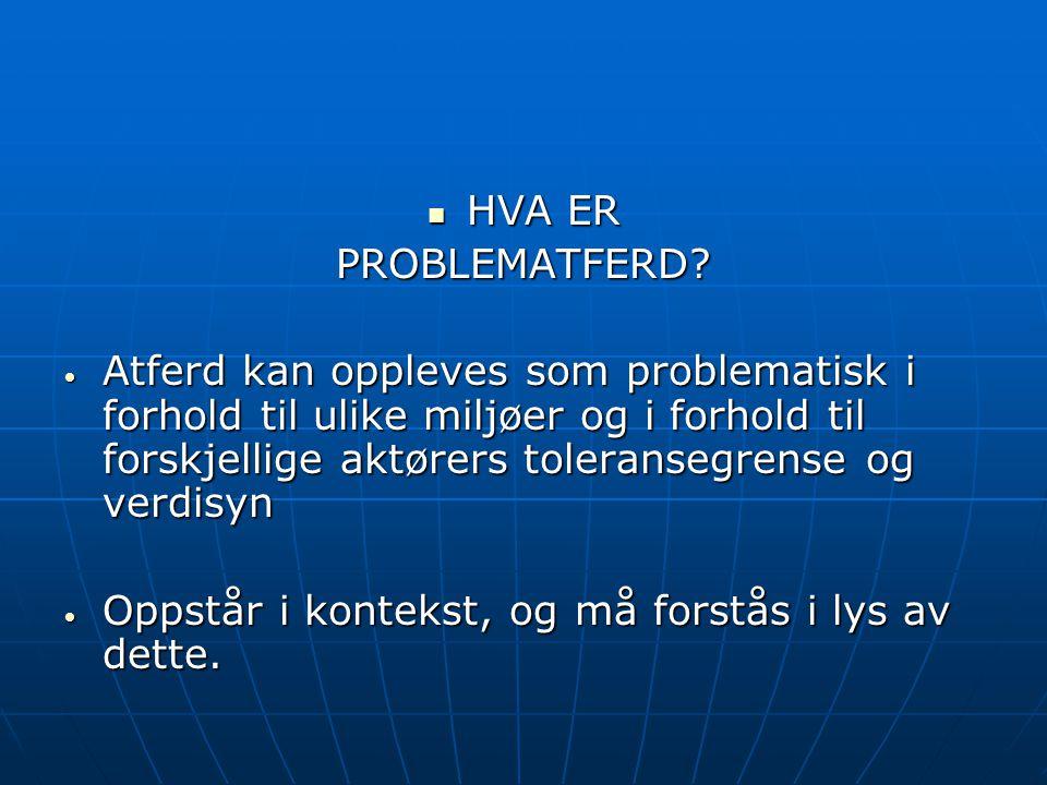 HVA ER PROBLEMATFERD