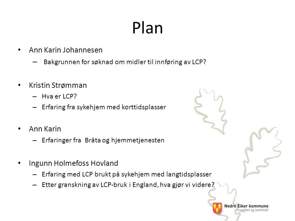 Plan Ann Karin Johannesen