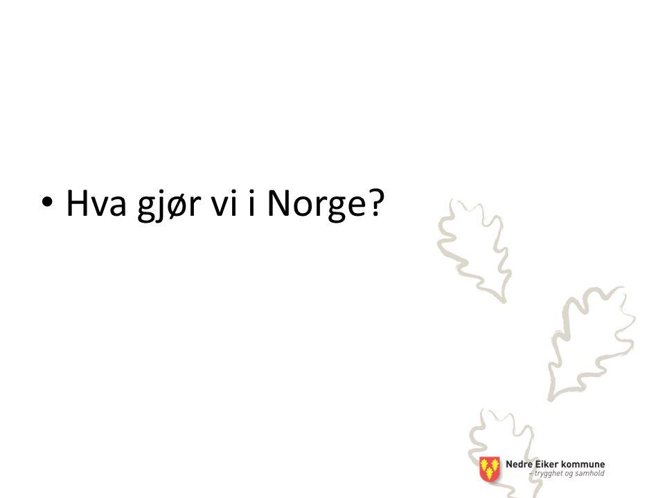 Hva gjør vi i Norge