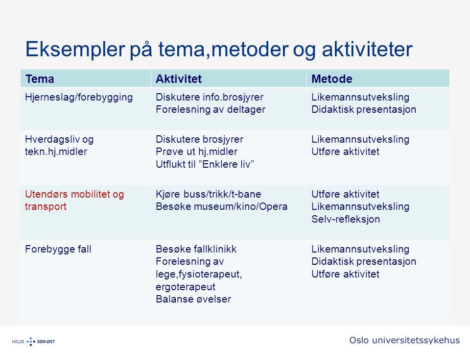 Eksempler på tema,metoder og aktiviteter