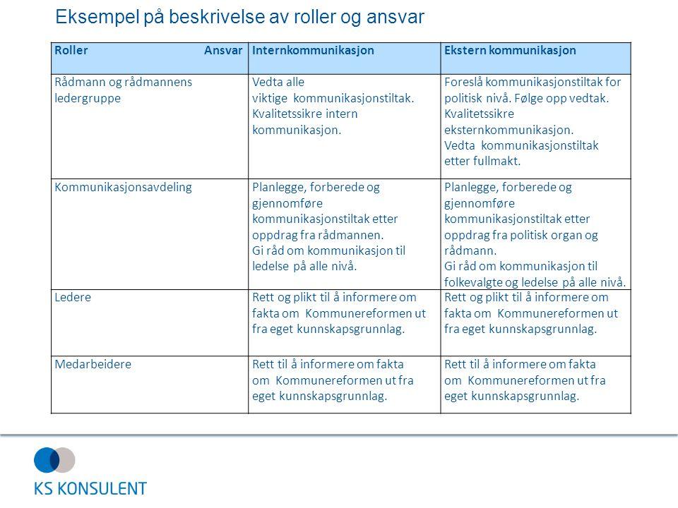 Eksempel på beskrivelse av roller og ansvar