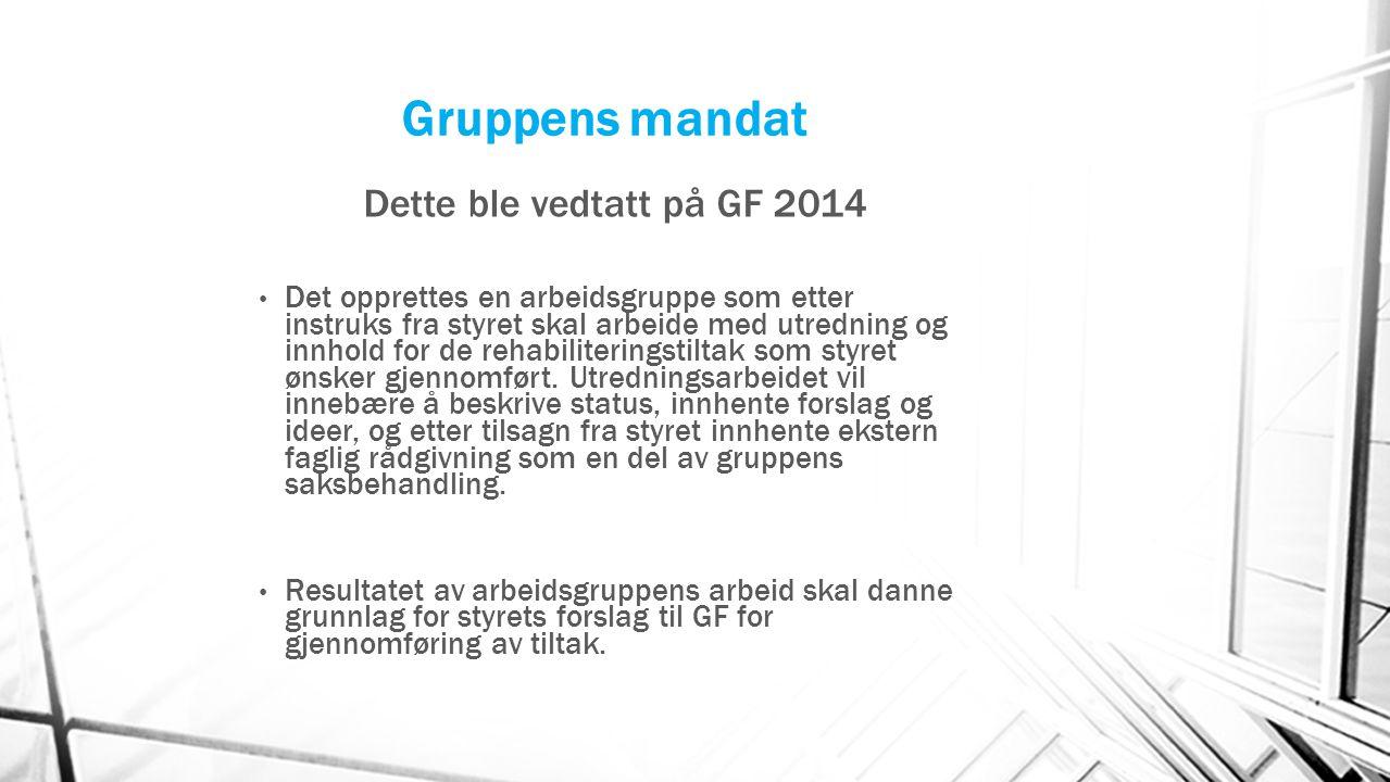 Gruppens mandat Dette ble vedtatt på GF 2014