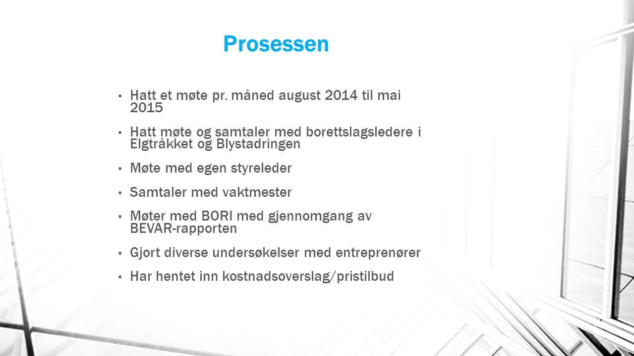 Prosessen Hatt et møte pr. måned august 2014 til mai 2015