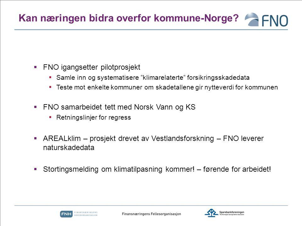 Kan næringen bidra overfor kommune-Norge