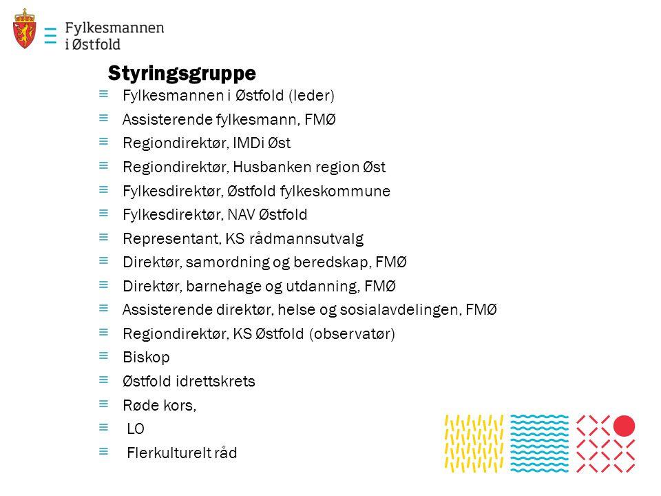 Styringsgruppe Fylkesmannen i Østfold (leder)
