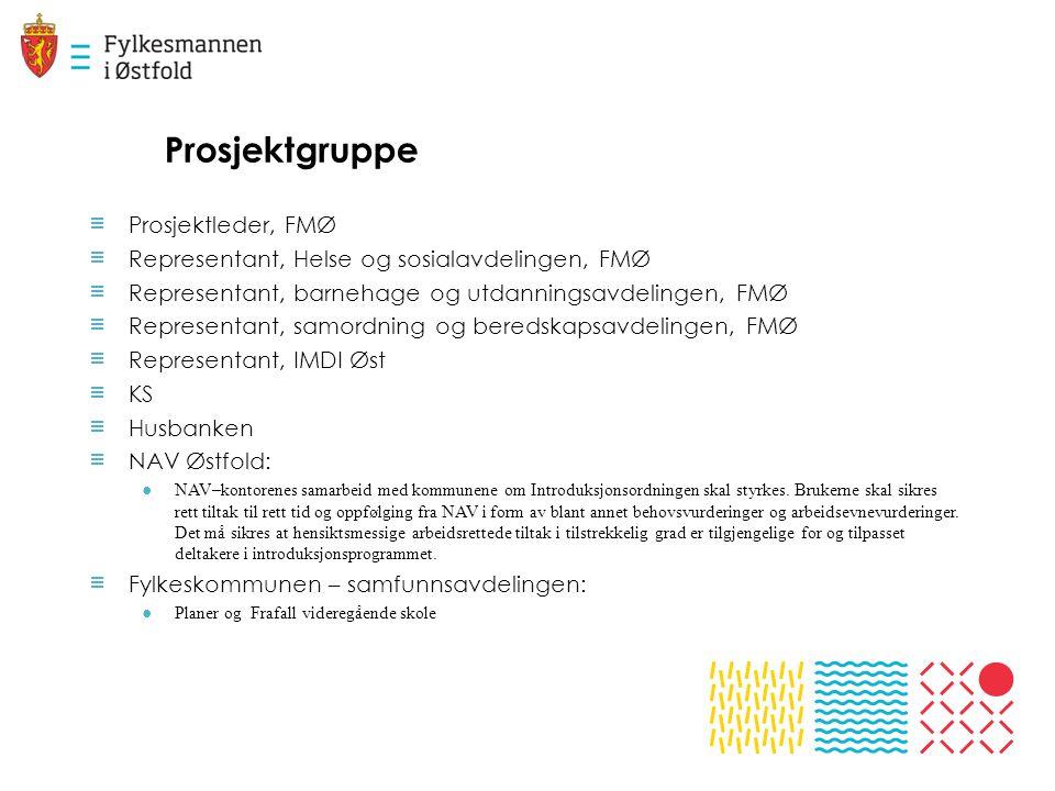 Prosjektgruppe Prosjektleder, FMØ