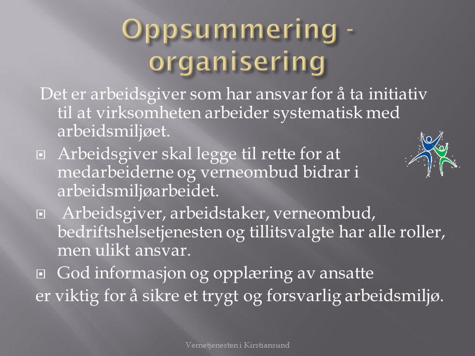 Oppsummering - organisering