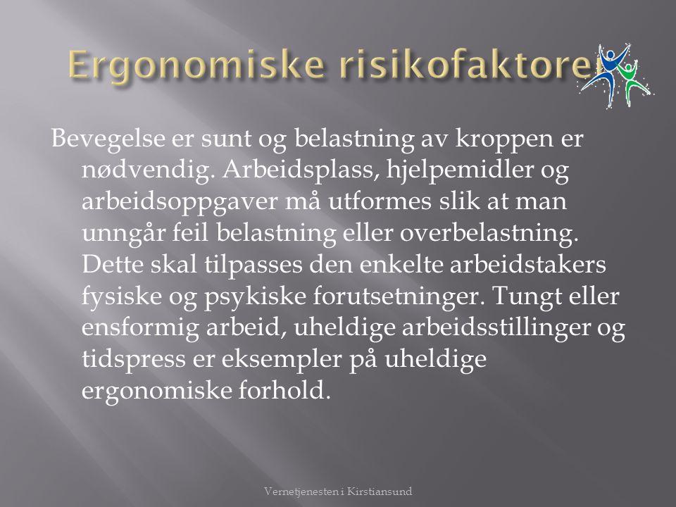 Ergonomiske risikofaktorer