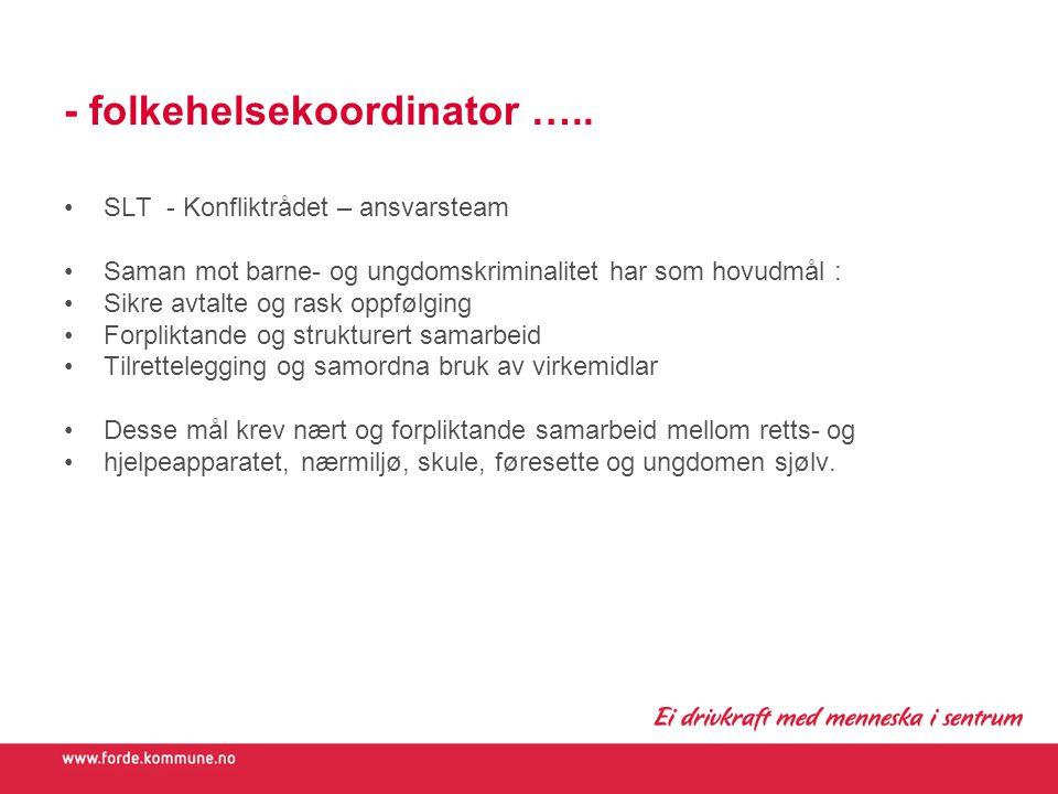- folkehelsekoordinator …..