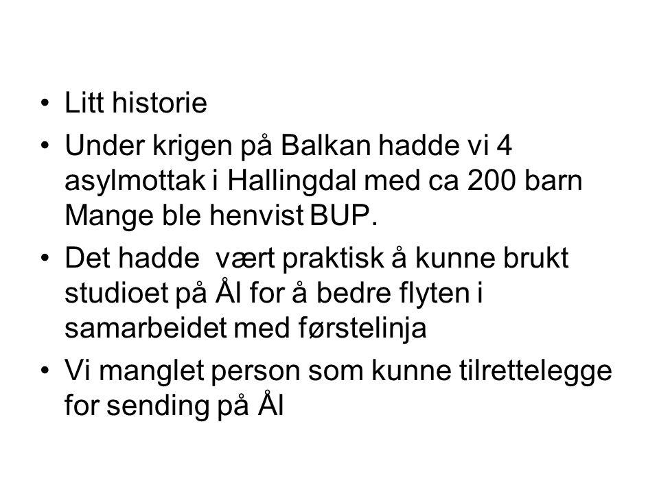 Litt historie Under krigen på Balkan hadde vi 4 asylmottak i Hallingdal med ca 200 barn Mange ble henvist BUP.