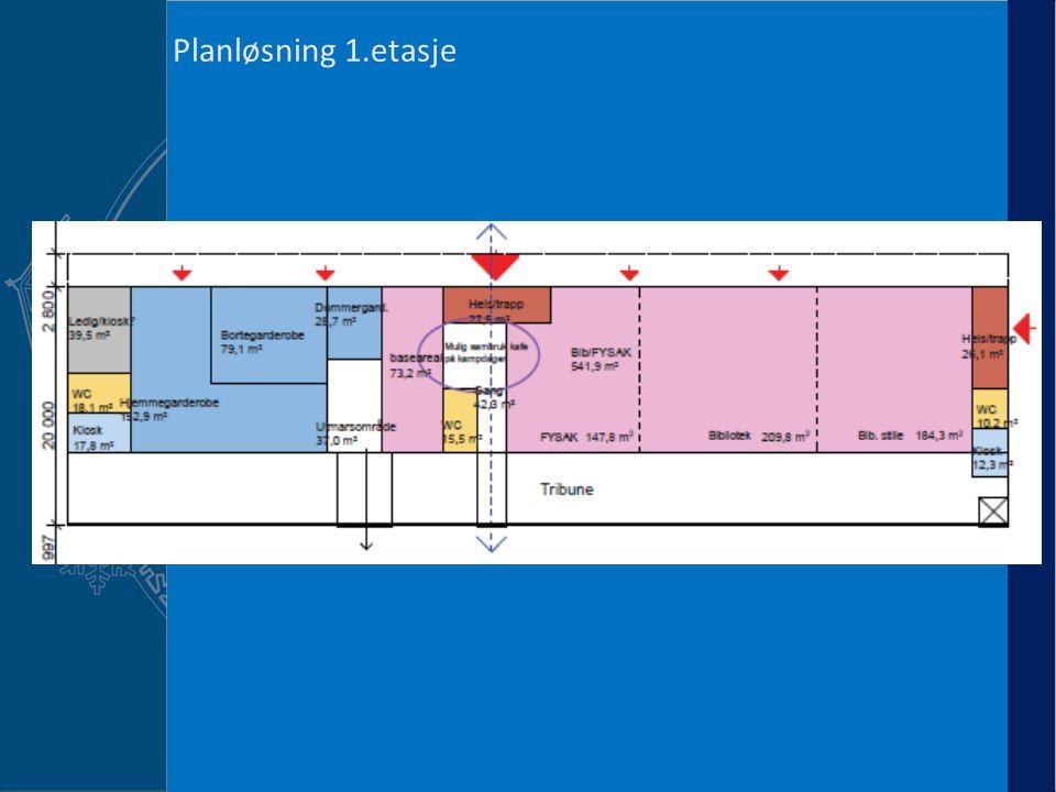 Fremdrift RIL Planløsning 1.etasje