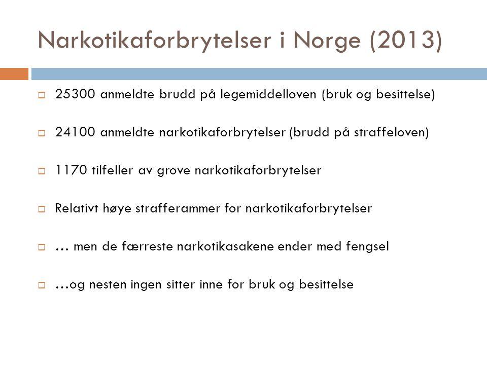 Narkotikaforbrytelser i Norge (2013)