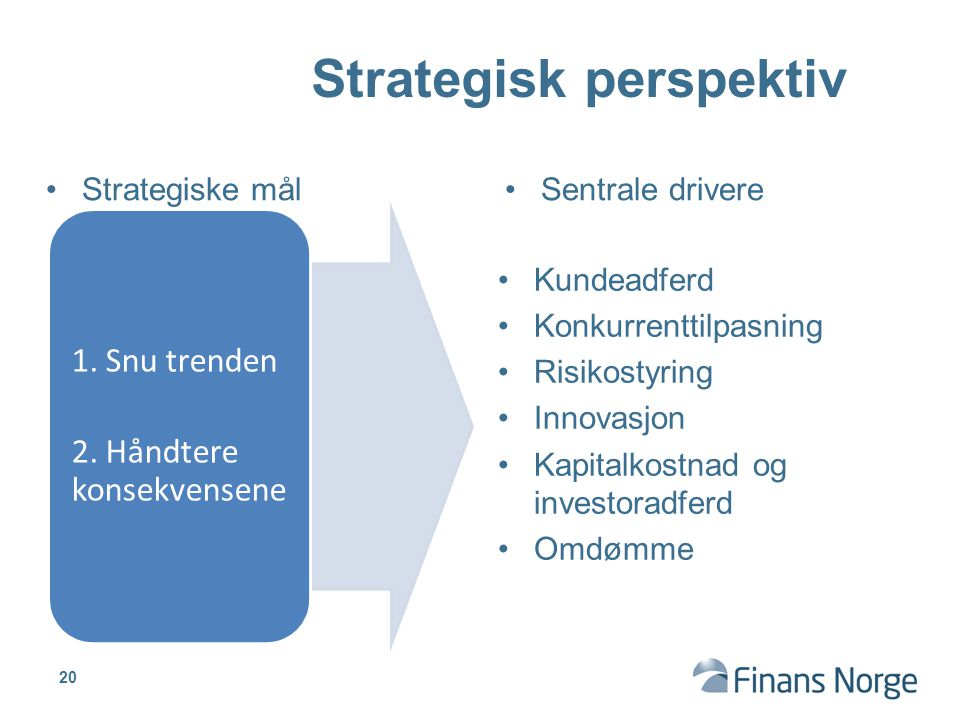 Strategisk perspektiv