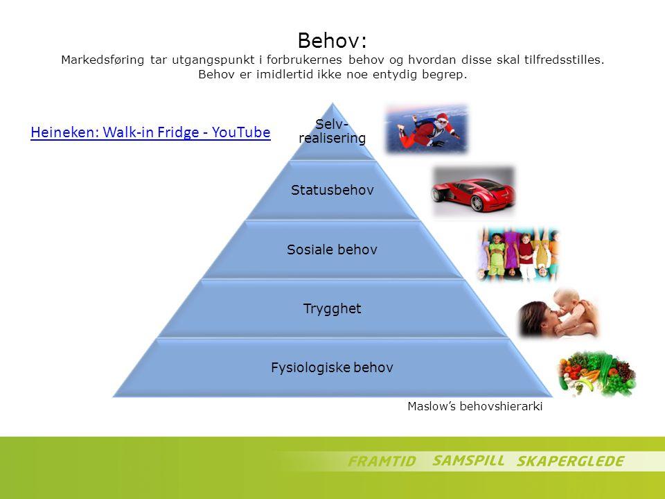 Behov: Markedsføring tar utgangspunkt i forbrukernes behov og hvordan disse skal tilfredsstilles. Behov er imidlertid ikke noe entydig begrep.