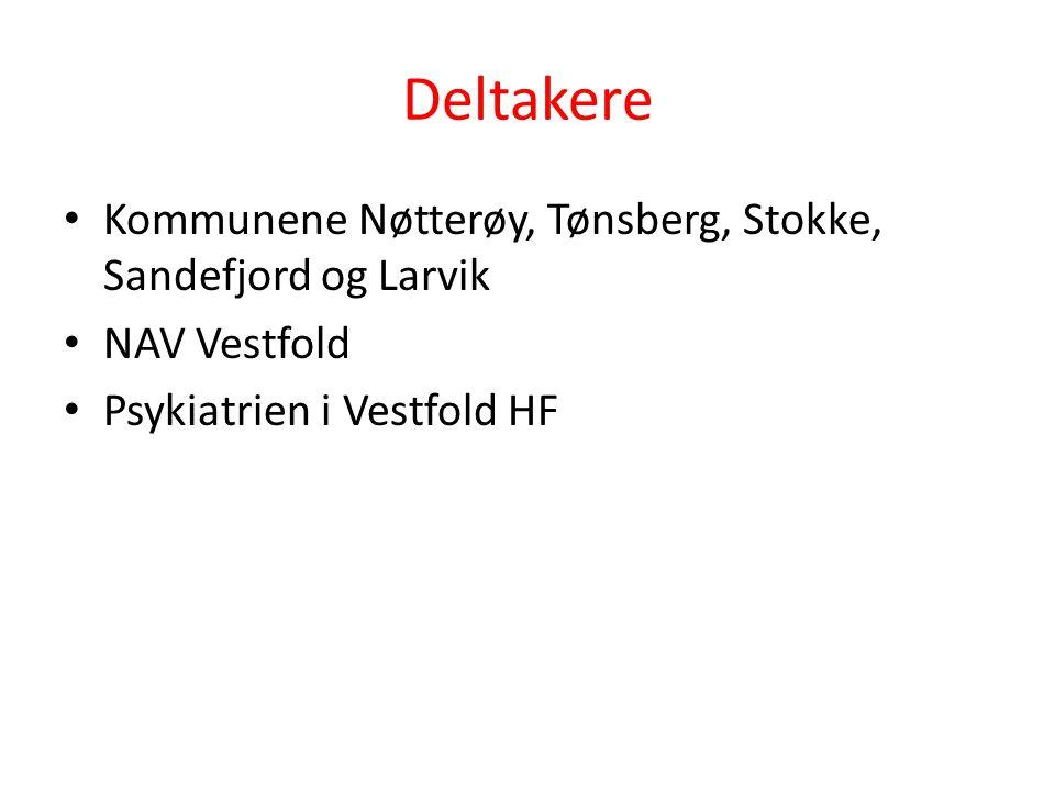 Deltakere Kommunene Nøtterøy, Tønsberg, Stokke, Sandefjord og Larvik