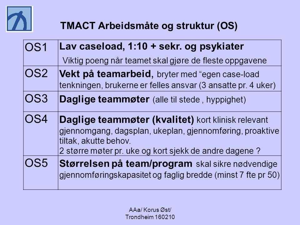 TMACT Arbeidsmåte og struktur (OS)