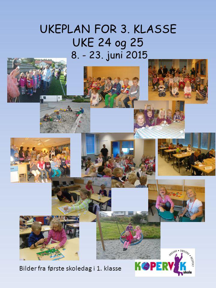 UKEPLAN FOR 3. KLASSE UKE 24 og 25 8. - 23. juni 2015