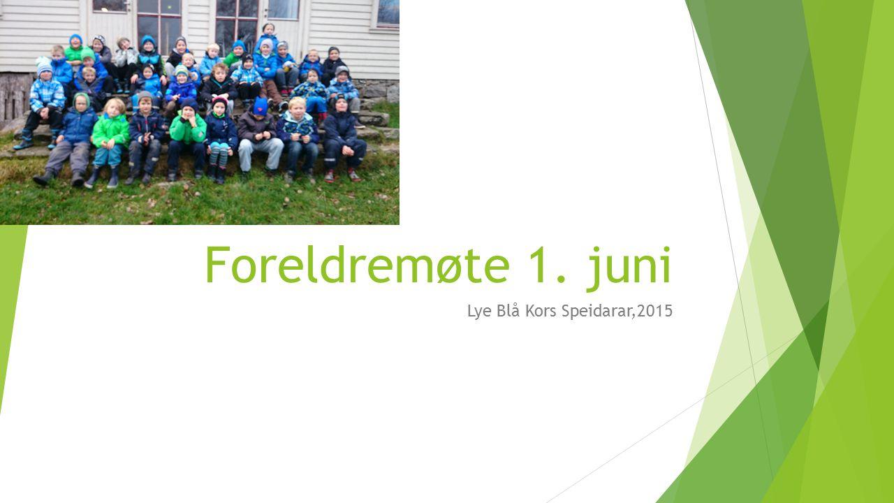 Foreldremøte 1. juni Lye Blå Kors Speidarar,2015